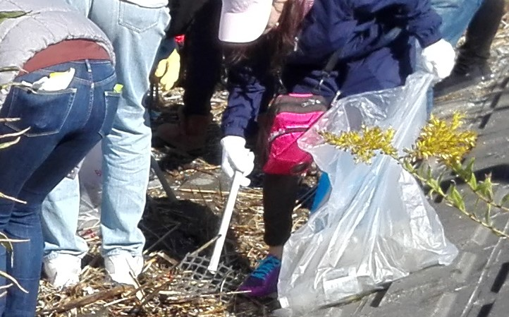 ゴミ拾いボランティア