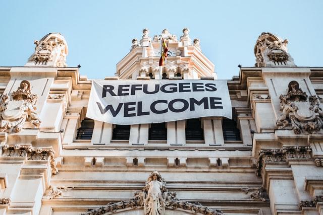 難民認定者数2019年