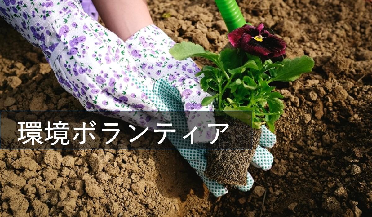 環境ボランティア東京