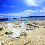 海や川でゴミ拾いをする理由 プラスチックゴミが人体に悪影響を与える